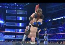 10 Times WWE Wrestlers Saved Other Wrestlers From Injury