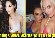 10 Things WWE Wants You To FORGET About The Cast Members Of Total Divas!