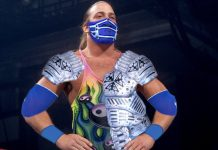 10 Wrestling Gimmicks Originally Designed For Other Wrestlers
