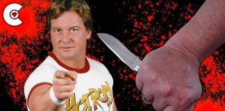 10 Times Fans Tried To Kill Wrestlers
